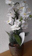 große,weiße Orchidee circa 50 cm hoch im Topf mit Beleuchtung