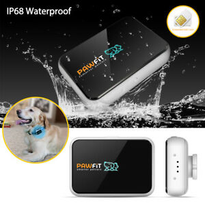Pawfit 2 GPS Dog Tracker Pet Real Time Tracking Collar Finder Locator w SIM Card