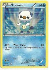 Rare Holo Foil Pokemon Card Oshawott Black Star Promo Bw03