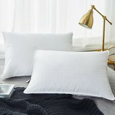 2 Pack White Goose Down Feather Bed Pillows