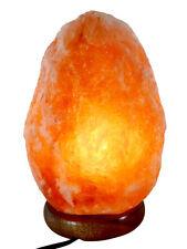 Himalayan Natural Salt Rock Light Lamp Ionic Crystal Air Purifier w/Bulb 7-11lbs