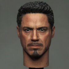"Hot Toys Custom Iron Man TONY STARK Figure 1/6 Scale Male Head Sculpt 12"" Body"