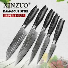 Professional  Kitchen Knife Cook Damascus Steel Set Chef Sharp Quality Knives