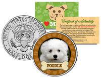 POODLE Dog JFK Kennedy Half Dollar US Colorized Coin