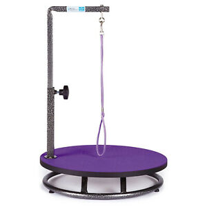 Master Equipment Rotating Small Pet Grooming Table w/ Adjustable Arm, Purple