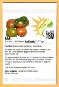 🍅 Tomate 'RAF' , 10 Samen