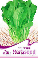 Original Packaging 100 Seeds Rocket Salad Seed Arugula Vegetable Seeds Hot D021