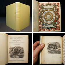 1850 Waring Squirrels & Other Animals *Rare Copy* Illustrated *Only copy on net*