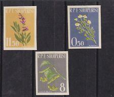 albania 1962 Sc 613/5 flower,imperf,set MNH       q1175