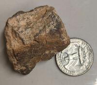 38.4 gram Unclassified NWA METEORITE (#L4081)