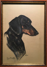Audrey McNaughton (Canadian) - Pastel - Portrait Of A Dog Named Storm (1967)