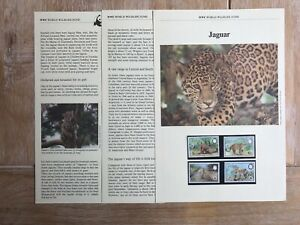 BELIZE 1983 PAGES x 3 WWF JAGUAR BIG CATS ANIMAL FAUNA