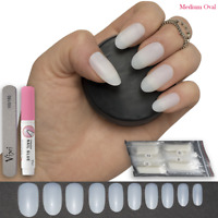 600 OVAL Short/Medium False NAILS FULL COVER Fake Natural Opaque Tips ✅FREE GLUE