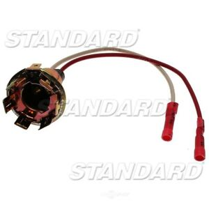 Tail Light Socket  Standard Motor Products  S75
