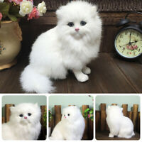 Realistic Persian Cat Animals Models Stuffed Plush Toy Children Fluffy Pet Dolls