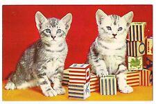 TIGER STRIPED KITTENS Tabby CATS & Wood ABC BLOCKS Vintage Postcard White Gray