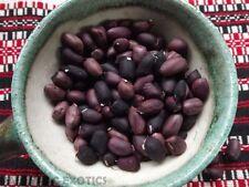 Black Peanut - 5+ seeds - FINE RARITY!
