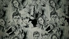 LINED VALANCE 42X12 HARRY POTTER MOVIE COMIC FABRIC SKETCH CHARACTER ART