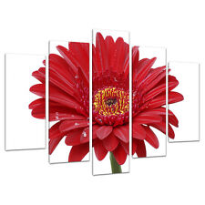 Set of 5 Piece Red Floral Canvas Wall Art Pictures Flowers Prints 5097