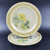 "Set of 2 VTG Franciscan Pottery Earthenware Pebble Beach 10 1/2"" Dinner Plates"
