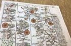 BARNSLEY HALIFAX SKIPTON RICHMOND OWEN BOWEN MAP C1720 FROM BRITANNIA DEPICTA
