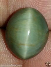 8.63 CT Green Cats Eye 100% Natural AAA+ Superb Quality Fabulous Gemstone GR3