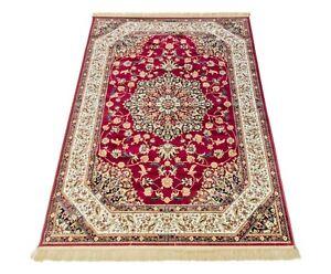 Tappeto orientale per salotto, disegno persiano, tappeto di qualità con frangia.
