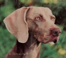 "LOT OF 4 WEIMARANER ""CONVERSATION CONCEPTS"" COASTERS by BARBARA AUGELLO - BNIP"