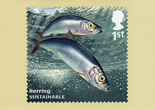 2014 SUSTAINABLE FISH NEW SEALED PHQ POSTCARDS SET OF 10. No 390.