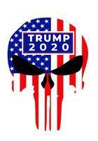 TRUMP 2020 PUNISHER DIECUT DECAL WINDOW BUMPER STICKER POLITICAL TRUMP USA FLAG