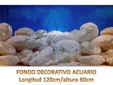 FONDO DECORATIVO ACUARIO longitud 120cm altura 60cm ciclidos africa pecera D441