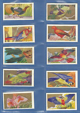 ANONYMOUS  -  VERY  RARE  SET  OF  24  WORLD'S  MOST  BEAUTIFUL  BIRDS  -  1930