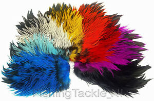 Rooster Coque Saddles Hackle Feathers Phoenix Fly Tying Black Tips Crafts x10 C3