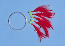 Makrelenvorfach 5 Haken-Größe 1/0 rote Federn, Fluo Perlen,  Makrelenpaternoster