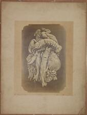 LOUIS THEOPHILE HINGRE LE POISSON FOTOGRAFIA SCULTURA G. GRAVET ALBUMINA 1880