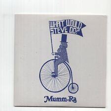 (JA505) Mumm-Ra, What Would Steve Do? - 2007 DJ CD