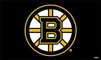 Boston Bruins 3ft x 5ft Flag/Banner NHL Officially Licensed Free Shipping