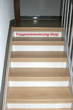 Treppenrenovierung,Treppe,Stiege,Treppenstufe,Treppensanierung,Holztreppe,Stufe