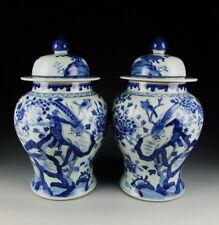 China Antique Pair of Blue&White Porcelain Vases w Bird&Flower