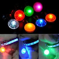 Mini Pet Dog Cat Puppy LED Flashing Collar Safety Night Light Keyring Pendant AU
