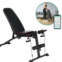 Adjustable Weight Bench Incline Decline Folding Full Body Workout Training GymUS