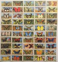 Brooke Bond Butterflies of the World Vintage Card Set 50 Cards Blue Backs