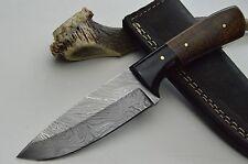 Damastmesser Jagmesser Taschenmesser Damast Messer damascus knife Skinner #4