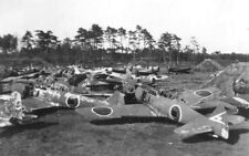 WWII B&W Photo Japanese Aircraft Wrecks Nakajima Ki-84  World War Two WW2 / 6110