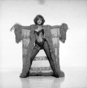 "R12 ANN MARGRET Actress Harry Langdon Vintage ORIGINAL 2.25"" B&W NEGATIVE"