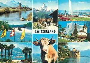Postcard Europe Switzerland 1978 multi view flags lake Geneve Matterhorn cow