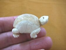 TURT-21) little white Tortoise Turtle shed ANTLER figurine Bali detailed carving