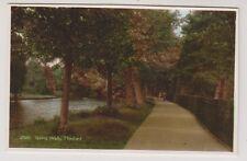 Norfolk postcard - Spring Walk, Thetford - RP