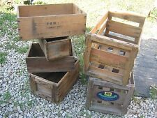 6 pcs Wood Advertising Boxes Fruit Box Wine Box Campbell Jeff great for decor