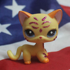 Littlest pet shop Figure Toy  orange  Short hair loose cute cat LPS66